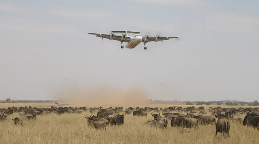 Kenya air safaris