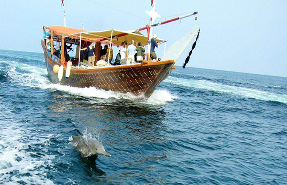 Boats used in Wasini Full Day Tour